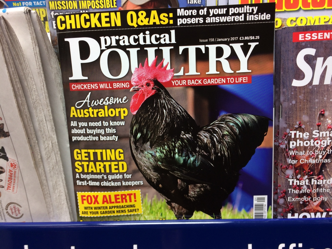 poultrycover