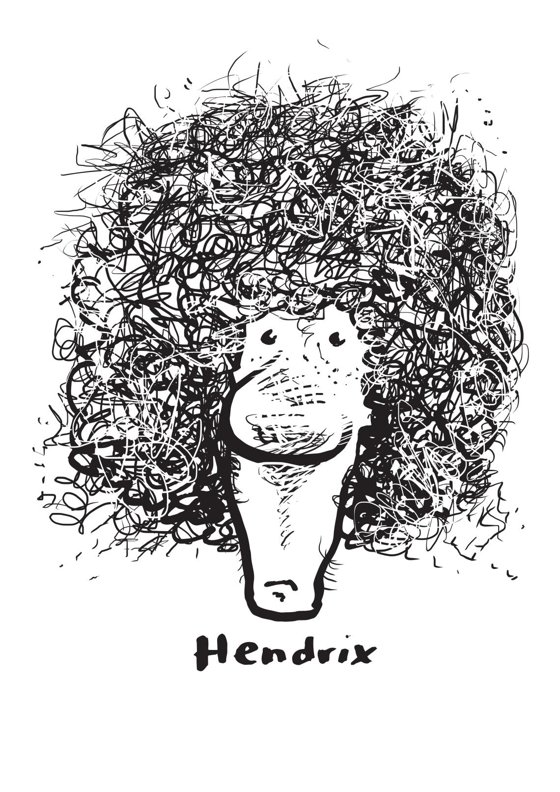 Haircuthendrix